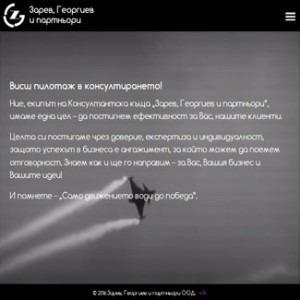 Зарев, Георгиев и партньори